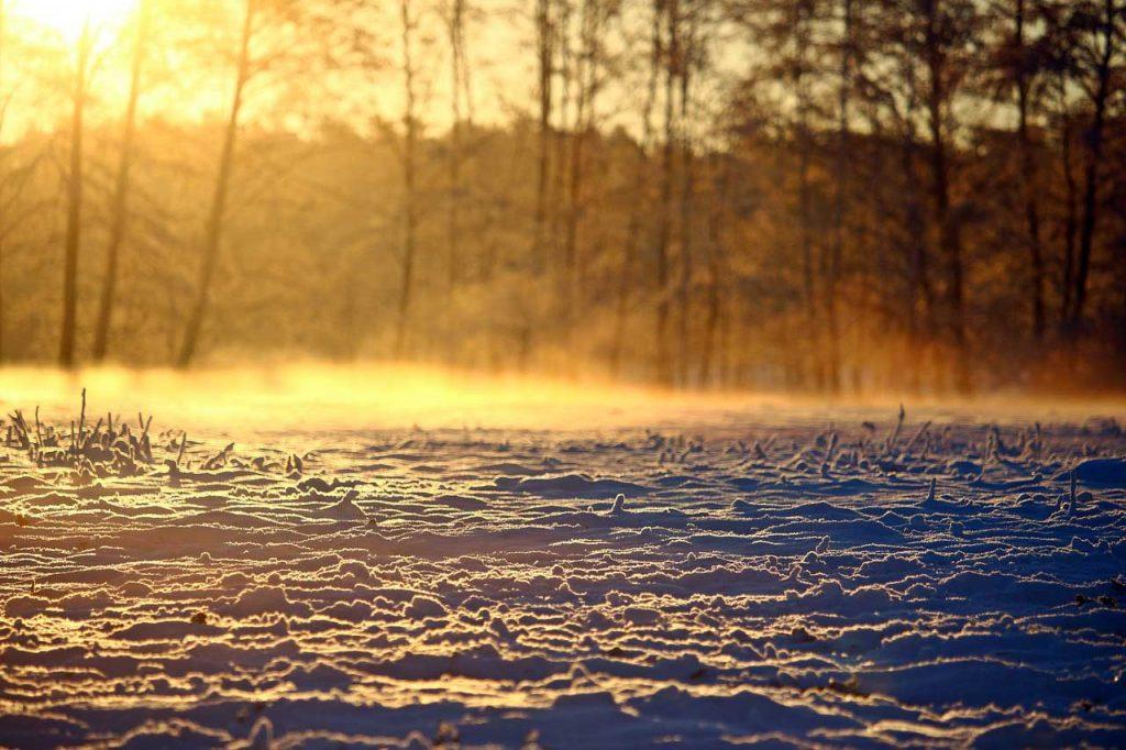 Winterlandschaft in der Dämmerung
